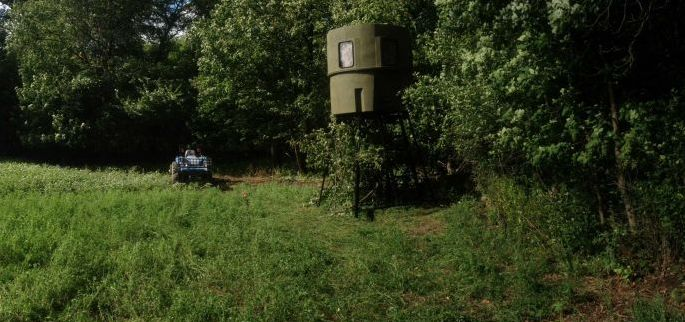 Early season hunting strategies include targeting field edges.