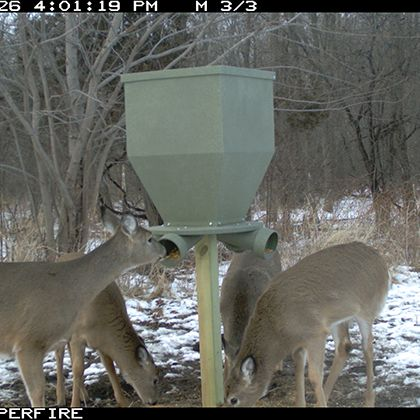 Feedbank 300 Gravity Deer Feeder Banks Outdoors