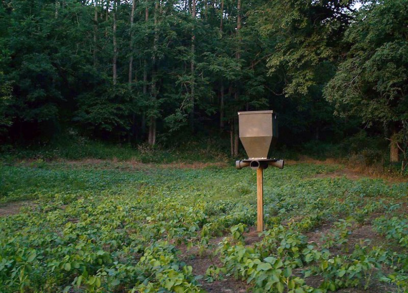 The Benefits Of Using Food Plots And Feeders Banks Outdoors